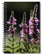 Purple Wild Flowers - 1 Spiral Notebook