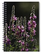 Purple Wild Flowers - 2 Spiral Notebook