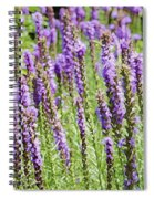Purple Wild Flowers3 Spiral Notebook