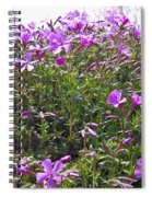 Puryple Spiral Notebook