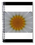 Pushing Up Daisies - Kaleidoscope - Pentaptych Spiral Notebook