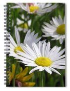 Pushing Up Daisies Spiral Notebook