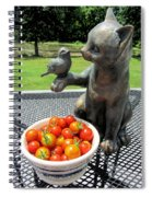 Pussycat And Tomatoes Spiral Notebook