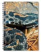 Pygmy Rattlesnake Spiral Notebook