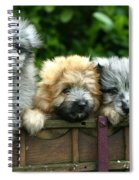 Pyrenean Sheepdogs Spiral Notebook