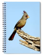 Pyrrhuloxia Cardinalis Sinuatus Female Spiral Notebook