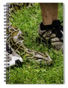 Python Snake In The Grass And Running Shoes Spiral Notebook