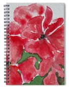 Pzzzazz Spiral Notebook