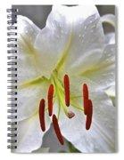 Qcpg 13-001 Spiral Notebook