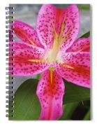Qcpg 13-002 Spiral Notebook