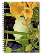 Qcpg 13-009 Spiral Notebook