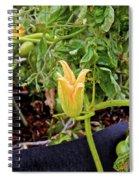 Qcpg 13-010 Spiral Notebook