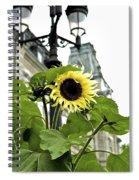 Qcpg 13-013 Spiral Notebook