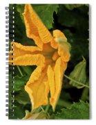 Qcpg 13-014 Spiral Notebook