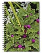 Qcpg 13-020 Spiral Notebook
