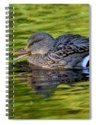 Quack Spiral Notebook
