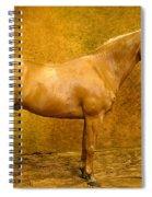 Quarter Horse Spiral Notebook
