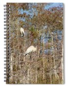 Quartet In The Trees Spiral Notebook