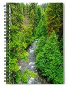 Quartz Creek Spiral Notebook