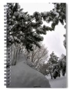Queen City Winter Wonderland After The Storm Series 0031 Spiral Notebook
