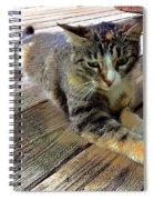 Queenie Spiral Notebook