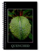 Quenched 2 Spiral Notebook