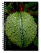 Quenched Spiral Notebook