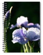 Quenched Overnight Spiral Notebook