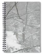 Querida In The Snow Storm Spiral Notebook