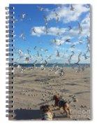 Quick Fly Away Spiral Notebook