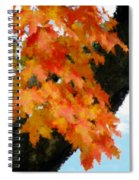 Quick Take On Autumn Spiral Notebook