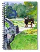 Quiet Man Watercolor 2 Spiral Notebook