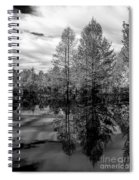 Quiet Side Spiral Notebook