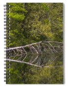 Quiet Waters Spiral Notebook