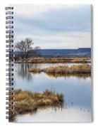 Quiet Wetlands Spiral Notebook
