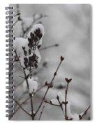 Quiet Winter Spiral Notebook