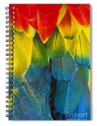 Quillicious... Spiral Notebook