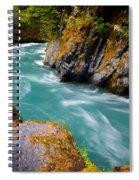 Quinault River Bend Spiral Notebook