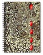 Quo Vadis Spiral Notebook
