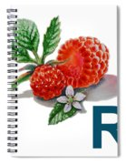 R Art Alphabet For Kids Room Spiral Notebook
