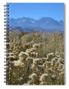 Rabbit Brush Owens Valley Spiral Notebook