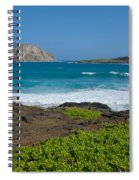 Rabbit Island Spiral Notebook