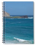 Rabbit Island Panorama Spiral Notebook