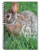 Rabbit On The Run Spiral Notebook