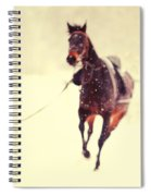 Race In The Snow Spiral Notebook