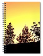 Radiance Of Nature Spiral Notebook