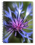 Radiant Flower Spiral Notebook