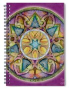 Radiant Health Mandala Spiral Notebook