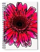 Radiant Sketch Spiral Notebook