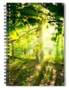 Radiant Sunlight Through The Trees Spiral Notebook